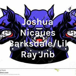 Joshua Nicaues Barksdale/Lil Ray Jnb