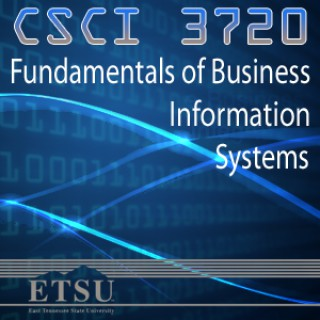 Fundamentals of Business Information Systems - Spring 2013
