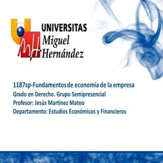 Fundamentos de Economía de la Empresa (umh1187sp) curso 2013 - 2014