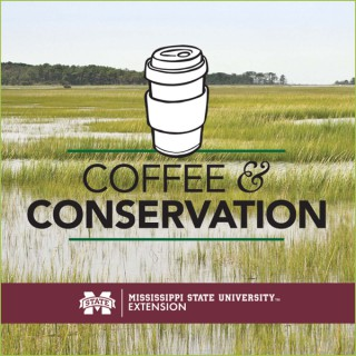 Coffee and Conservation
