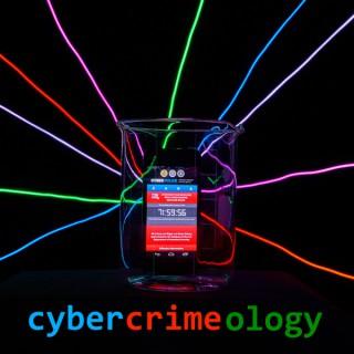 Cybercrimeology