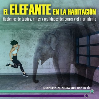 El Elefante en la Habitación