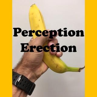Perception Erection