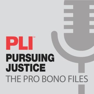 Pursuing Justice: The Pro Bono Files