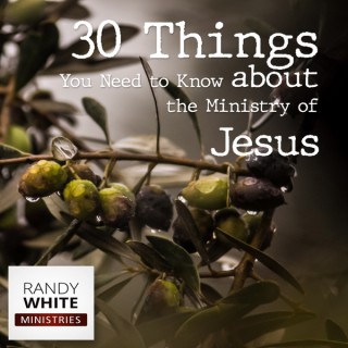 RWM: 30 Things You Need to Know about the Ministry of Jesus