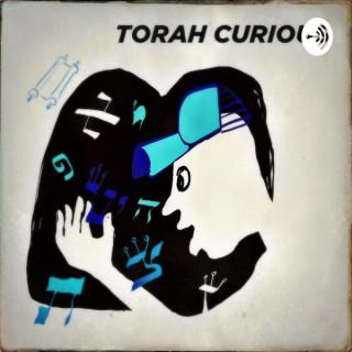 Torah Curious