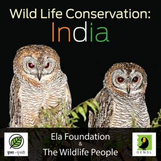 Wild Life Conservation: India Podcast