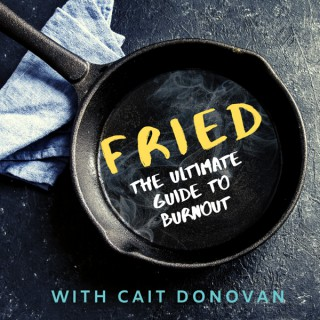 Fried. The Burnout Podcast