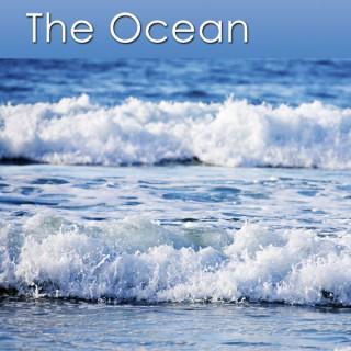 Healing Sounds of the Ocean