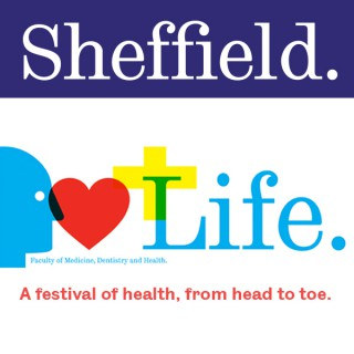 Life - A festival of health, from head to toe