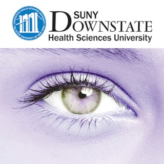Ophthalmology Lecture Series