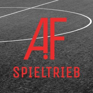 Spieltrieb - Jugendfußball