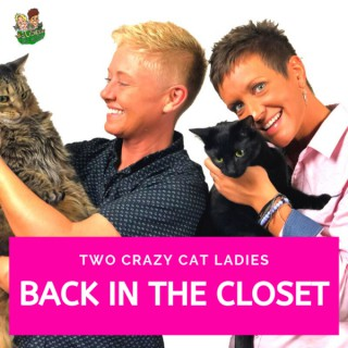 Back In The Closet - Two Crazy Cat Ladies