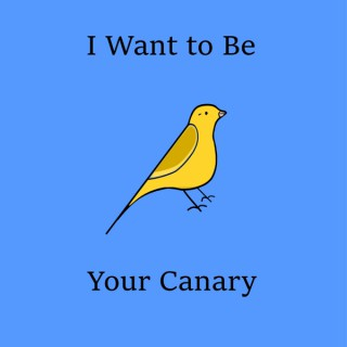 I Want To Be Your Canary - A Final Fantasy Podcast