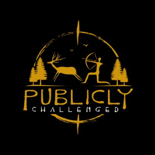 Publicly Challenged