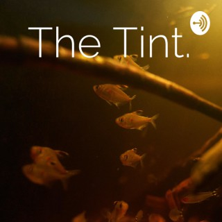 The Tint.