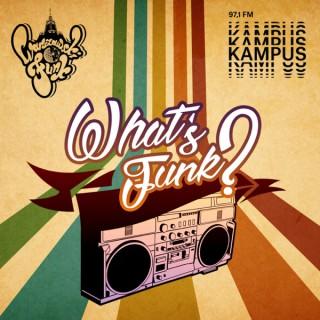 What's Funk? by Warszawski Funk