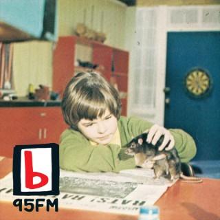 95bFM: Psychic Glands