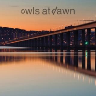 Owls at Dawn