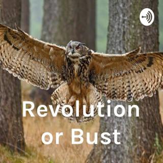 Revolution or Bust