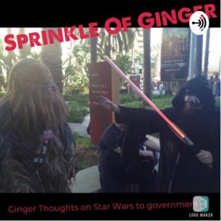 Sprinkle of Ginger