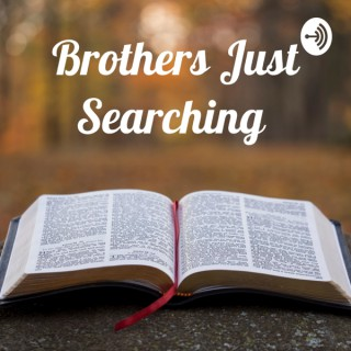 Brothers Just Searching