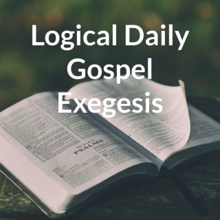 Daily Gospel Exegesis