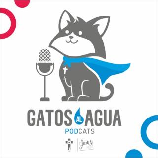 Gatos al Agua