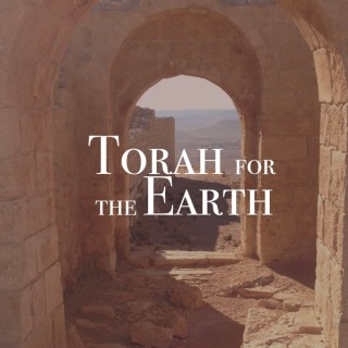 Torah for the Earth