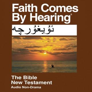 Uyghur Bible