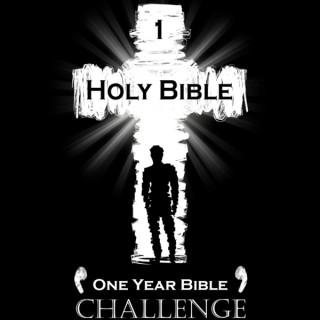 1 Year Bible Challenge