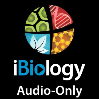 Audio-only streams of our videos