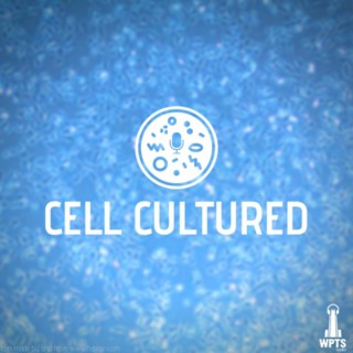Cell Cultured