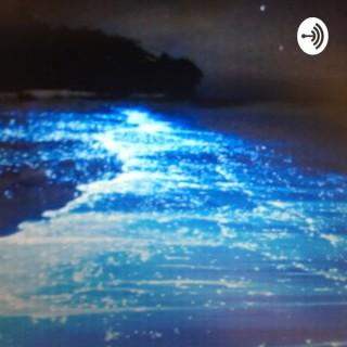 Bioluminescent Algae