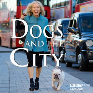 Dogs and the City