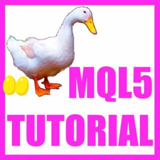 MQL5 Tutorial