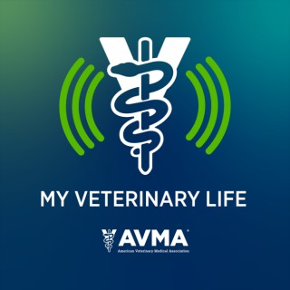 My Veterinary Life