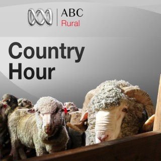 New South Wales Country Hour