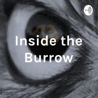 Inside the Burrow