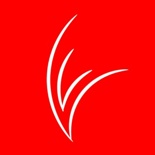 Visão Vermelha