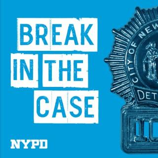 Break in the Case