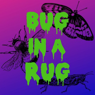 Bug in a Rug