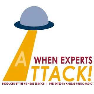 When Experts Attack!