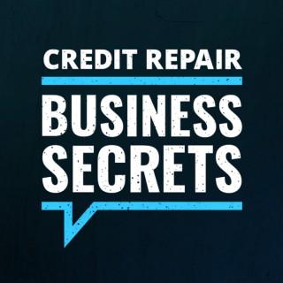 Credit Repair Business Secrets