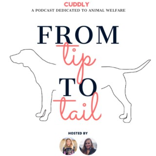 From Tip to Tail, a Podcast Dedicated to Animal Welfare