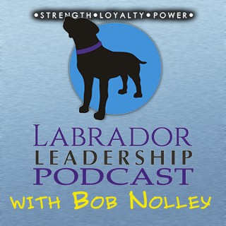Labrador Leadership