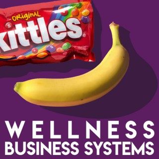 Wellness Business Systems Podcast