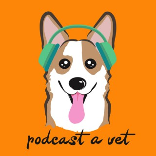 Podcast A Vet: Stories, Support & Community From Leaders In The Veterinary Field
