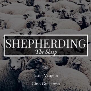 Shepherd the Sheep