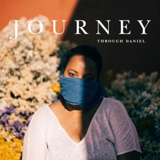 Willow Journey
